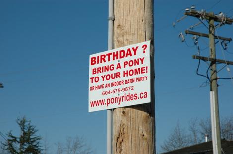 Birthdaypony